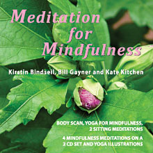 Meditation for Mindfulness CD